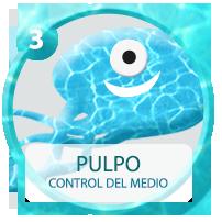 03_pulpo_ON