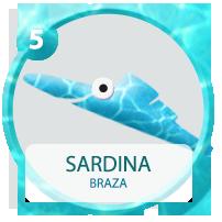 05_sardina_ON